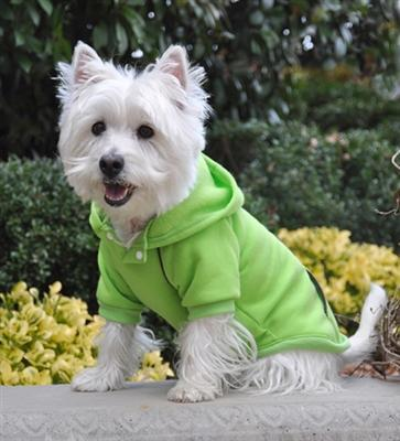 Casual Green Flash Sports Dog Sweatshirt with Hoodie at Pet Stop Store