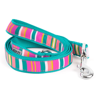 Cute & Playful Fiesta Stripe Dog Collar & Leash