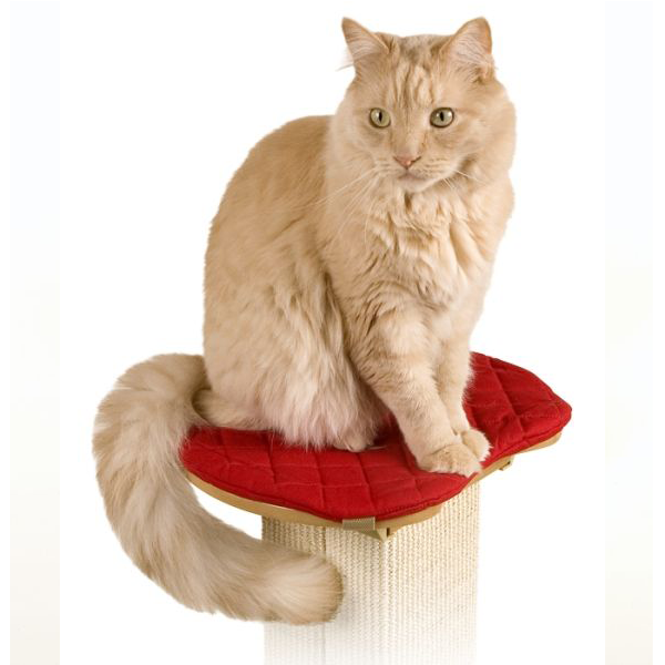 Ultimate Post Perch with Red Pad for Cats at Pet Stop Store