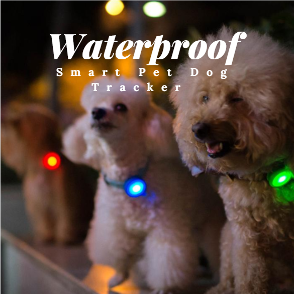 Waterproof Smart Pet Dog Tracker Monitor with Flashing Lights in All Colors