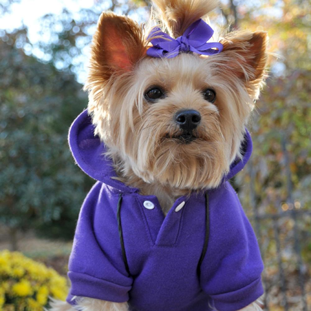 Cute Sporty Ultra Violet Dog Hoodie at Pet Stop Store