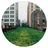 The overgrown High Line railway in New York City