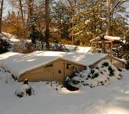 Greenhouses in winter