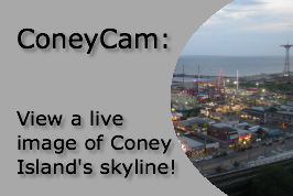 ConeyCam: View a live image of Coney Island's skyline!