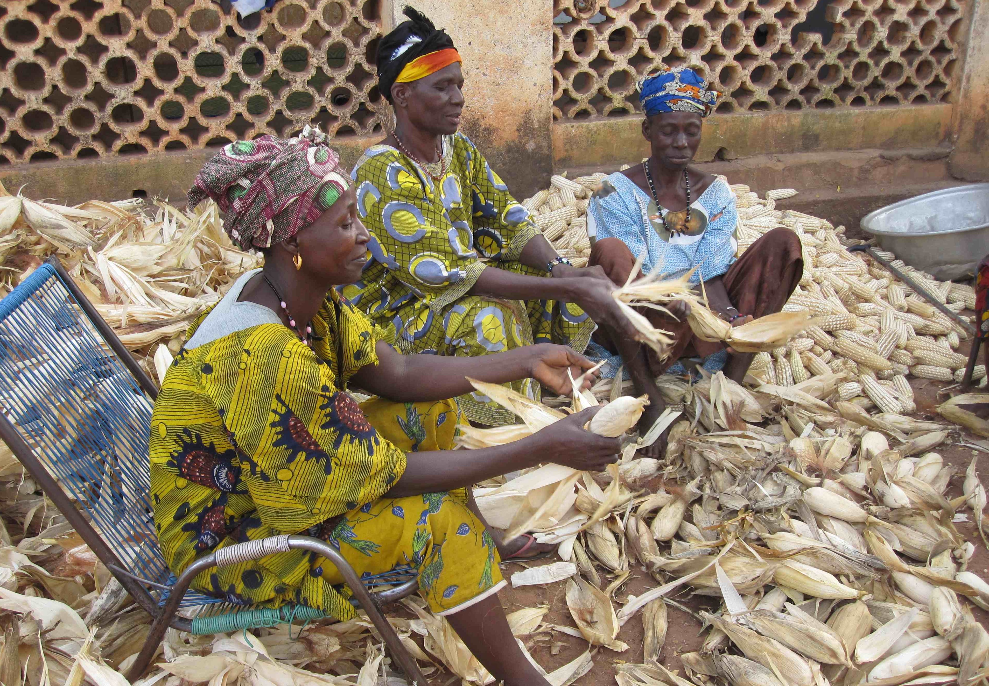 Women shelling maize at SCARDA workshop