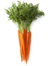 Carrot Bliss