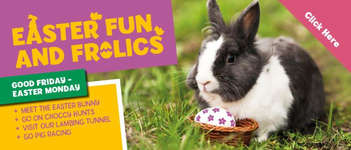 Easter 2019 at The Rare Breeds Centre Woodchurch
