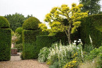 Hole Park Gardens in Rolvenden