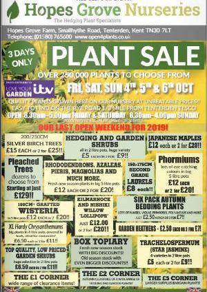 Plant Sale Hopes Grove Nurseries in Tenterden