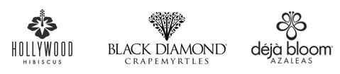 Black Diamond Crape Myrtles, Déjà Bloom Azaleas and Hollywood Hibiscus