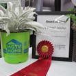 HGTV HOME Plants Update