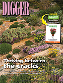 Digger Magazine - August 2015