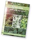 Artemisia book
