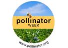 Annual Pollinator Week