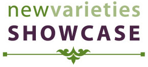 newvarieties SHOWCASE