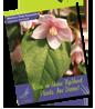 UpShoot 2014-2015 New Plant Catalog
