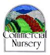 Commercial Nursery