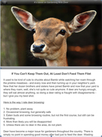 Deer Feature Page