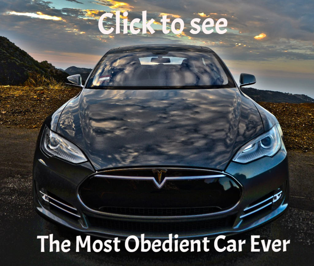World's Most Obediant Car