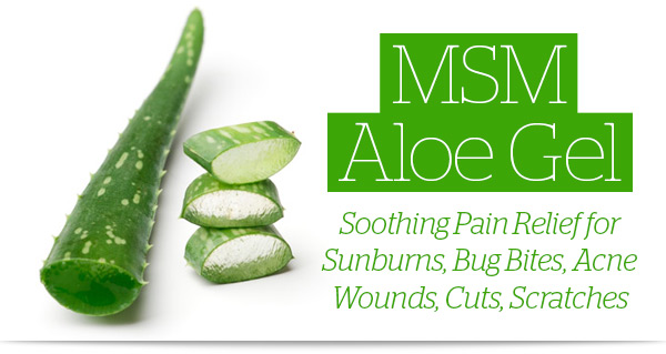 View Sunfood MSM Aloe Gel