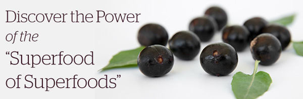 Discover the Power of the Superfood of Superfoods