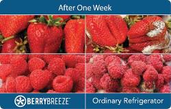 Berry Breeze™ vs. Ordinary Fridge