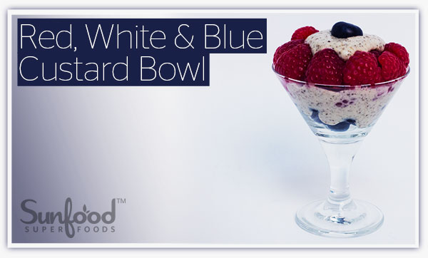 Red, White & Blue Custard Bowl
