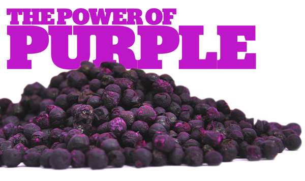 The Power of Purple: Maqui Berries!