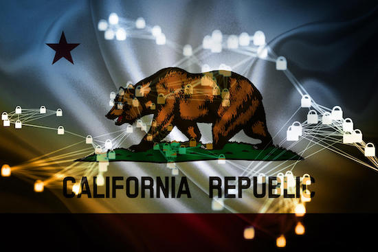 The California Republic bear
