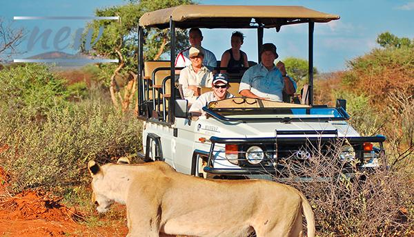 Sudafrica, Madikwe River Lodge
