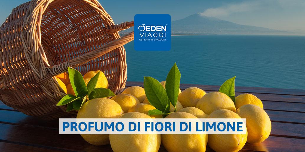 profumo di fiori di limone