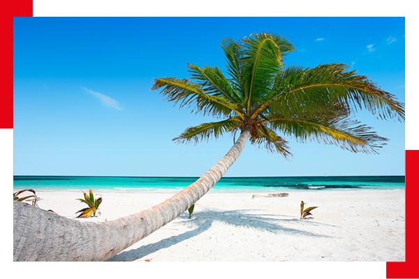 Capodanno ai Caraibi