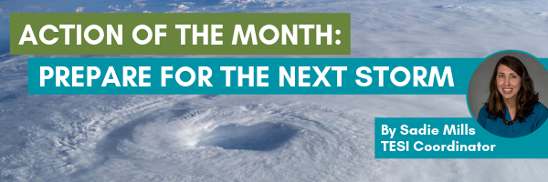 Action of the month: prepare for the next storm