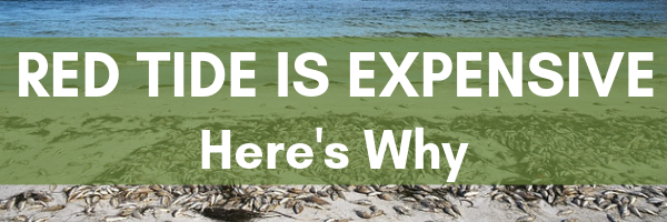 Red Tide is Expensive. here's why