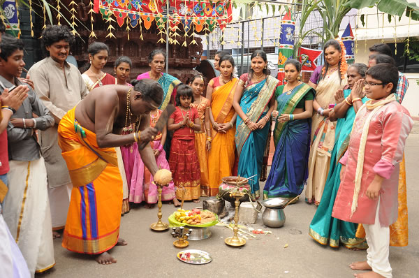 Thai Pongal celebration