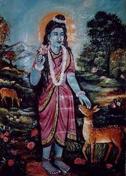 Valli Amma