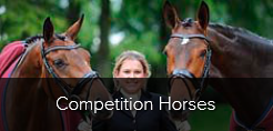 Competition horses