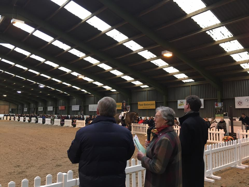 British Dressage YH Forum judges