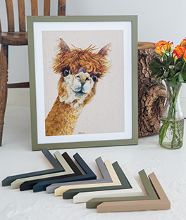 Llama picture framed in green Lima moulding with chevrons in foreground