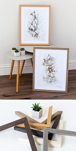Pictures of chickens and ducks framed in Mainline's MDF Loft range