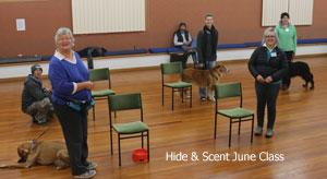 Hide & Scent Class