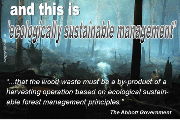 "This is ""ecologically sustainable forest management""?"