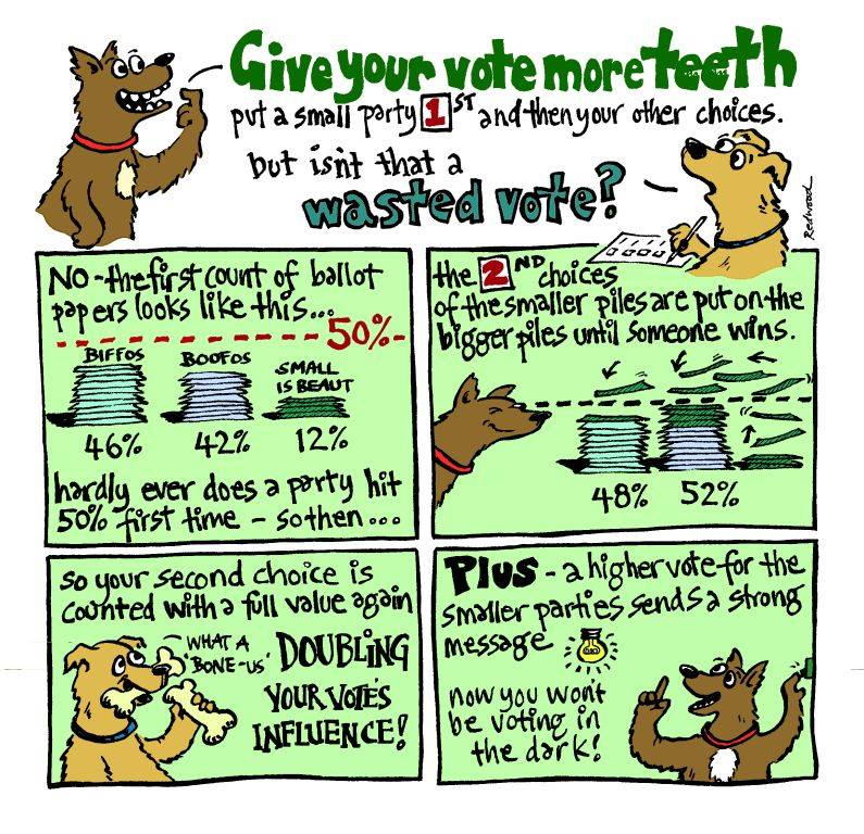 Give your vote more teeth - put a small party 1st - see why it isn't a wasted vote