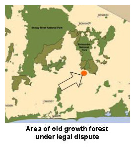 Map of the area of old growth forest under legal dispute