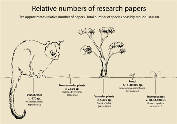 Reltive numbers of research papers