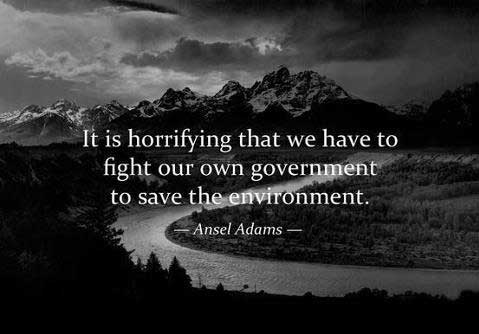 It is horrifying that we have to fight our own government to save the environment. -Ansel Adams, photographer (1902-1984)