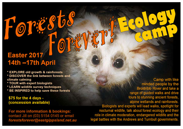 4 day Easter Ecology Camp 14th - 17th April 2017