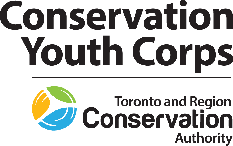 Conservation Youth Corps | Toronto and Region Conservation Authority (TRCA)