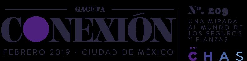 Chas Gaceta Febrero 2019