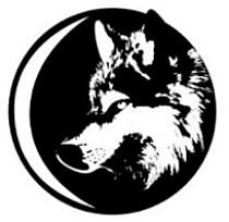 Silver Wolf Projects Pty Ltd